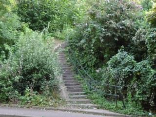 Csc escalier bas 2021 320x240