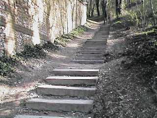 Csc escaliers 3